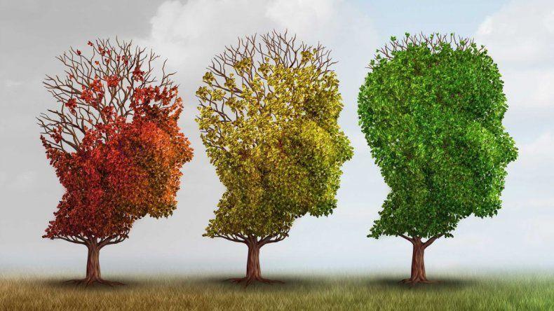 Municipio brindará una charla abierta sobre el Alzheimer