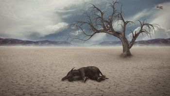 el calentamiento global seria mas rapido de lo previsto