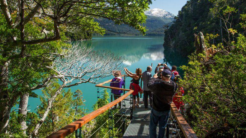 Historia y paisajes de la  Patagonia desde adentro: el Alerce Abuelo y La Trochita