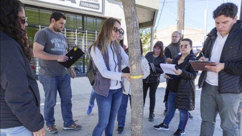 El municipio releva las especies que mejor se  adaptan a la zona para crear espacios verdes