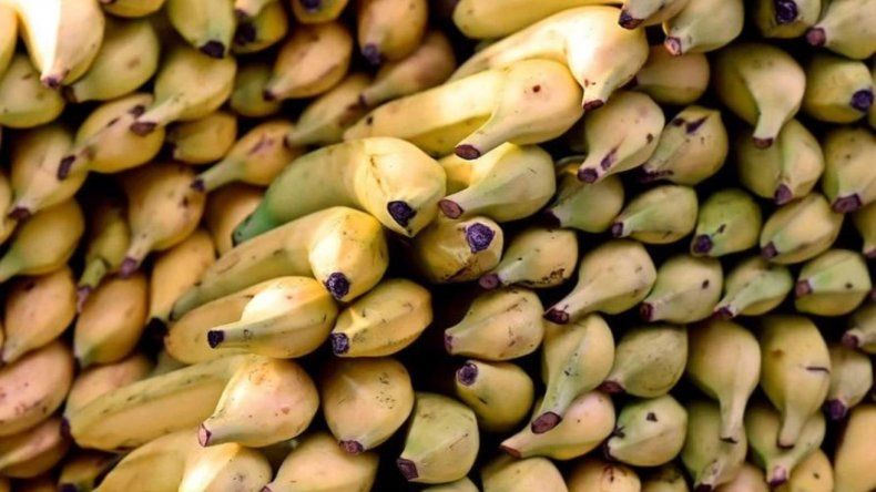 El precio de la banana subió abruptamente y en algunos lugares no se consigue
