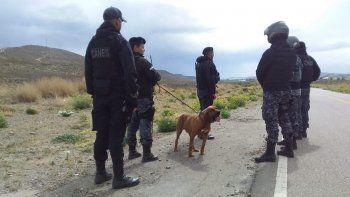 La tarea de Zeus, el perro raza Bloodhound de la Sección Canes, fue fundamental en la investigación.