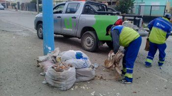 ¿como sera la recoleccion de residuos en el feriado?