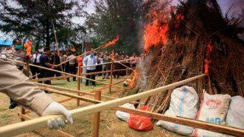 quemaron tres toneladas de marihuana y drogaron a todo un pueblo