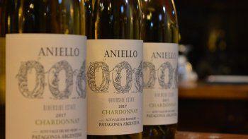 bodega patagonica lanza el primer vino que habla en el pais