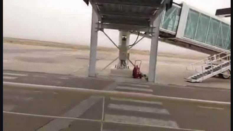 Video captado instantes después del aterrizaje.
