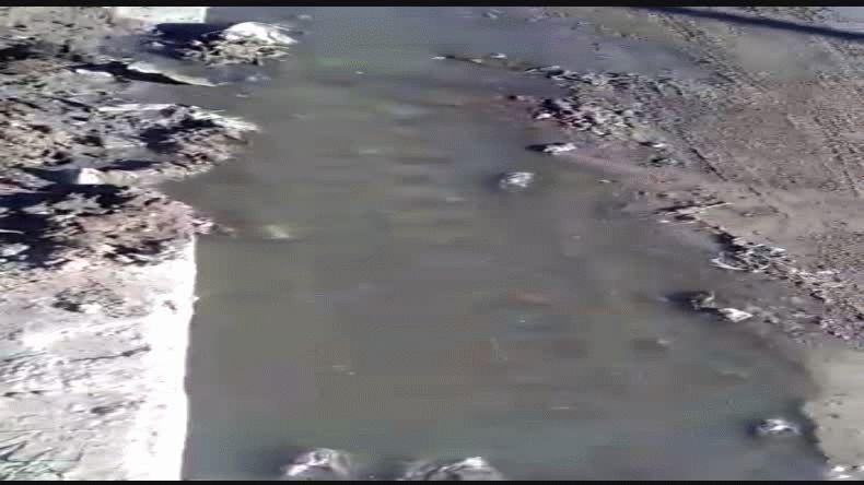 Video enviado al 297 4046449